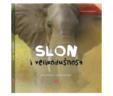 Slon i velikodušnost