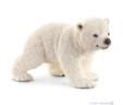 Polarni Medvjed mladunče